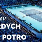 Tomas Berdych - Juan Martin del Potro Australian Open 20.01.2018